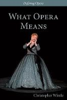 What Opera Means: Categories and Case-studies